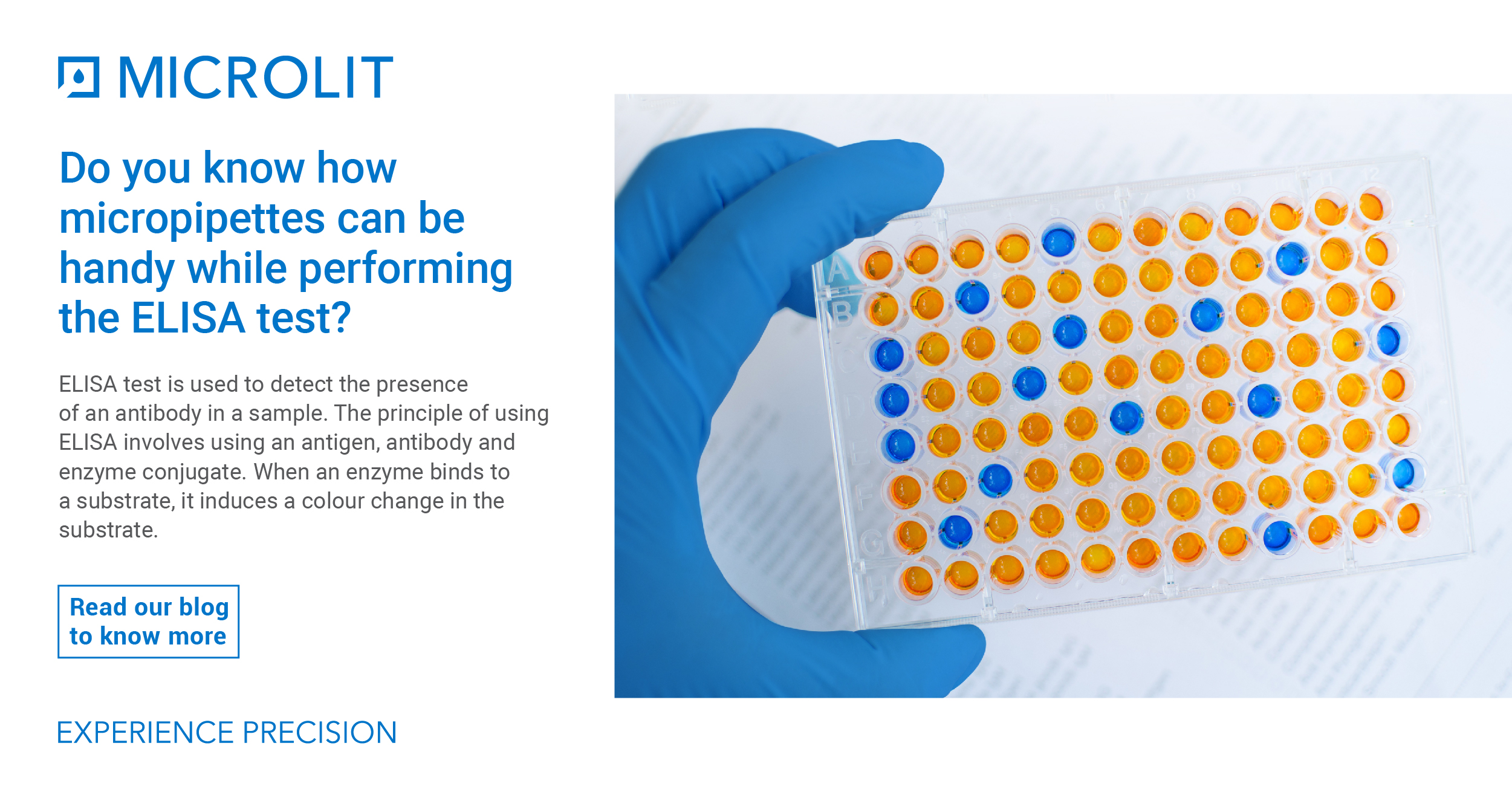 Understanding ELISA Test Basics and How Micropipettes Can be Handy While Performing These Tests