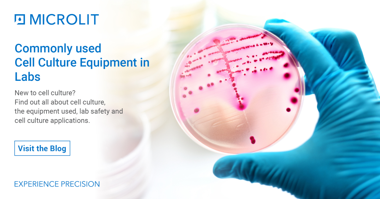 All You Should Know About Cell Culture